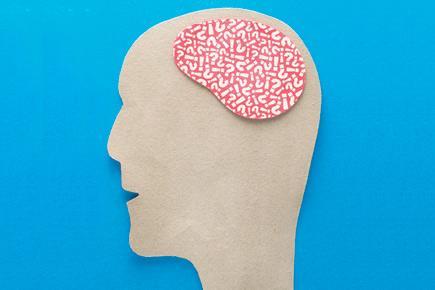 5210.brain2